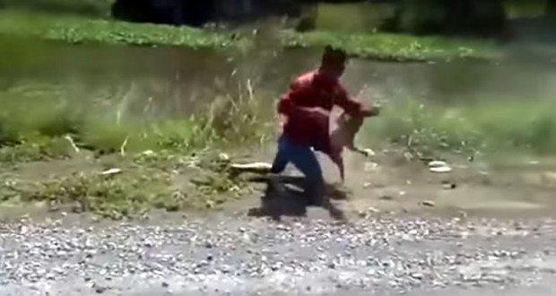 motorcyclist fights monkey